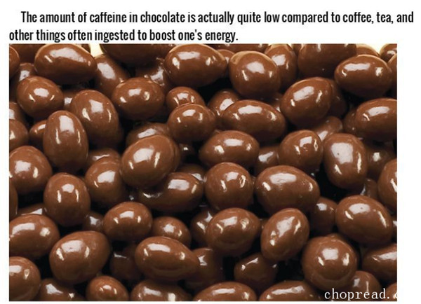 fascinating-facts-that-will-make-you-love-chocolate-1.jpg