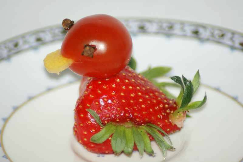fruit-animal-art-09.jpg